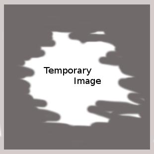 portfolio_temp